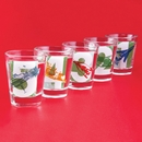 Thunderbird Five Shot Glasses